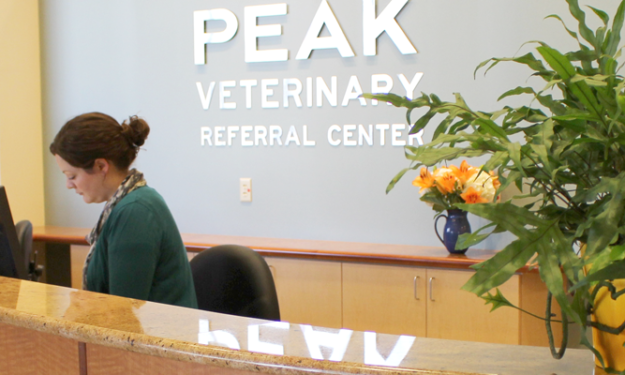 Peak Veterinary Referral Center in Williston Vermont - Reception desk image at the hospital
